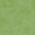 RILEY BLAKE - Shades - Grass