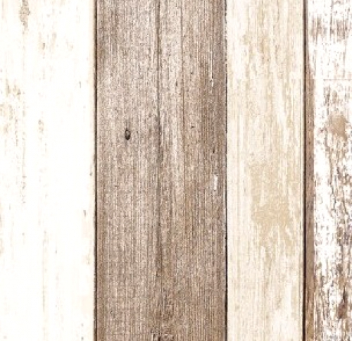 TIMELESS TREASURES - Home - Weathered Wood - Multi