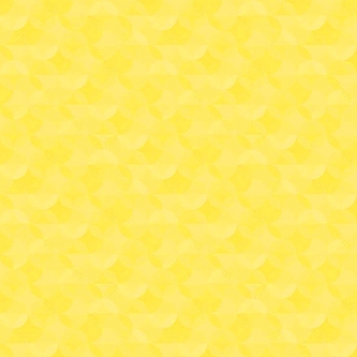 RILEY BLAKE - Crayola Kaleidoscope - Little Lemon