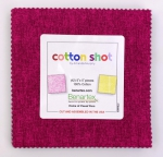 Benartex - Cotton Shot 5x5 Pack by Amanda Murphy