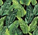 MICHAEL MILLER - Lush Leaves