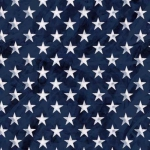 MICHAEL MILLER - Land That I Love - Bright Stars - Navy