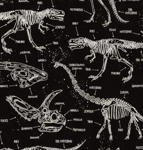 TIMELESS TREASURES - Glow In The Dark - Glow Dinosaur Skeletons