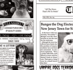 TIMELESS TREASURES - Dog - Bad To The Bone - Newsprint