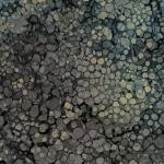 NORTHCOTT - Journey - Bubble Texture - Charcoal