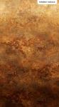 NORTHCOTT - Stonehenge Ombre - Digital Print  - Iron Ore