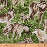 FABRI-QUILT, INC - American Wildlife - Wolf - 11229481