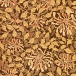 MODA FABRICS - Best of Morris - 8115-26
