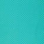 FREE SPIRIT - Needlepoint - Mint - PWJD112.MINTX