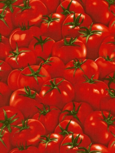 TIMELESS TREASURES - Food - Tomatoes - Red