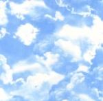 TIMELESS TREASURES - Sky