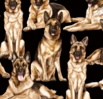 TIMELESS TREASURES - GM - German Shepherds - Black
