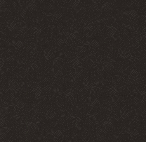 Skinny - SK1632- 2/3 yds - TIMELESS TREASURES - Hue - Black
