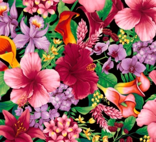 TIMELESS TREASURES - Tropical Floral - Multi