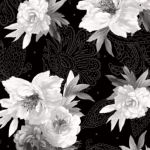 MAYWOOD STUDIO - Nocturne - Flowers on Paisley Black