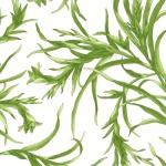MAYWOOD STUDIO - Sommersville - Leaves - Soft White