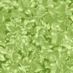 MAYWOOD STUDIO - Sommersville - Packed Floral - Dark Green
