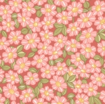 MAYWOOD STUDIO - Sunlit Blooms - Packed Daisy - Pink