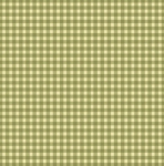MAYWOOD STUDIO - Wild Rose Flannel - Classic Check Flannel - Soft Green