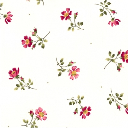 MAYWOOD STUDIO - Wild Rose Flannel - Single Flowers - Winter White