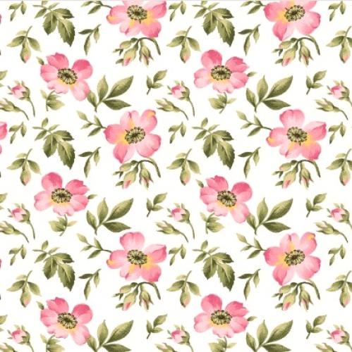 MAYWOOD STUDIO - Wild Rose Flannel - Open Roses - Winter White