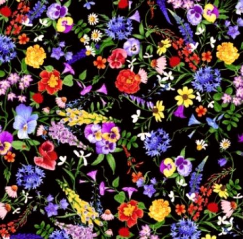 TIMELESS TREASURES - Meadow - Mini Flowers - Multi
