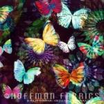 HOFFMAN - Spectrum Print -  Crystalia