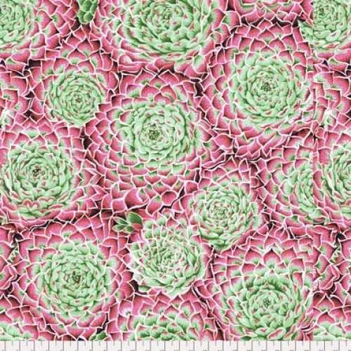 FREE SPIRIT - Kaffe Fassett - PhilipSpring 2018 -  Succulent - Pink
