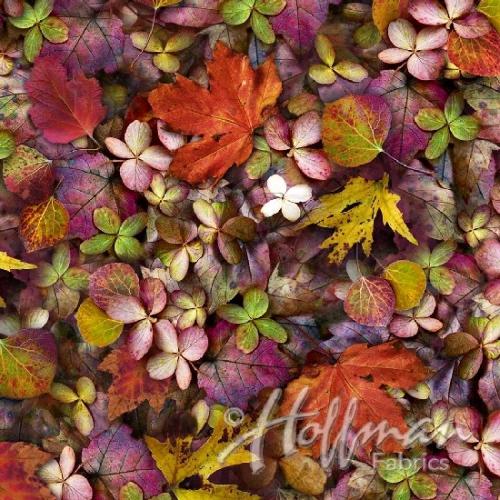 HOFFMAN - Leaf Me Be - September - Leaves - Red/Purple/Green