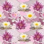 STOF - Digital Print - Lac Des Cygnes 5 - Rose