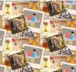 STOF - Digital Print - Safari Foto 1 - Multi Colore