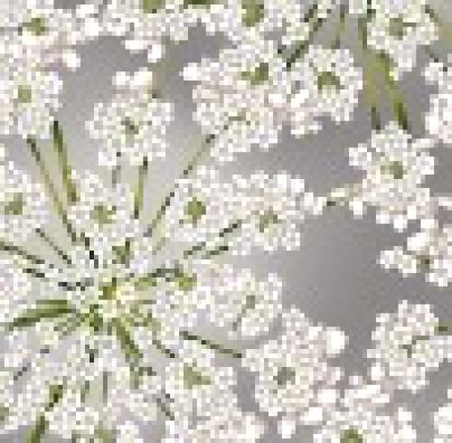 HOFFMAN - Spring Blooms - Gray - Silver