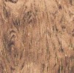 HOFFMAN - Meet Magnolia - Gold - Gold