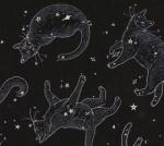 TIMELESS TREASURES - Rachel Hauer - Cats in Space - Black