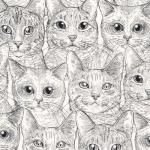 TIMELESS TREASURES - Rachel Hauer - Stacked Cat - White