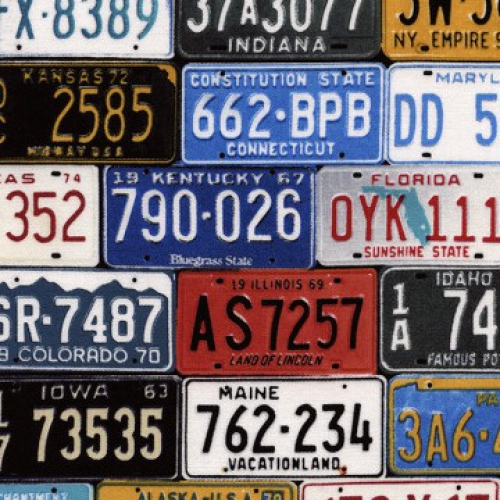 TIMELESS TREASURES - Road - License Plates - Multi