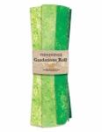 Northcott - Brights - Rainforest Stonehenge Gradations Roll 10 Fat Quarters