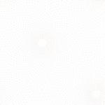 KAUFMAN - Whisper Prints 5 - Shadow - W172-