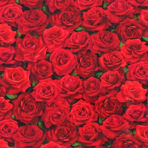 KAUFMAN - Imaginings - Rose - #3263-