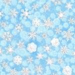 KAUFMAN - Winter's Grandeur - Frost