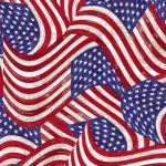 TIMELESS TREASURES - Packed Flags on Wood - USA
