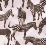 TIMELESS TREASURES - Wild - Zebras - Gray