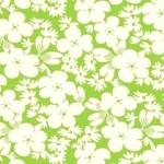 WASHINGTON STREET STUDIO- Feedsack - Green FB5058