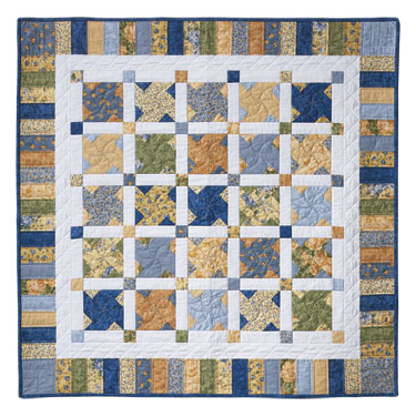 Twin Quilt Patterns Free : Quilts Through the Seasons 735272010753 - Quilt in a Day Books